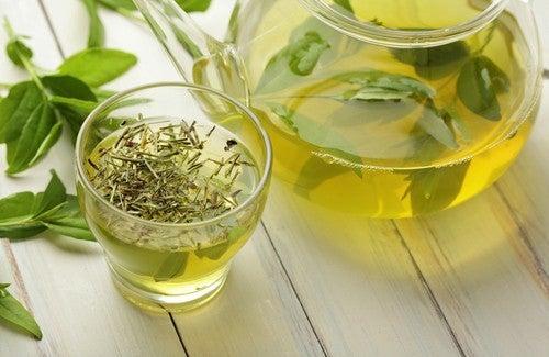 chá verde para perder peso