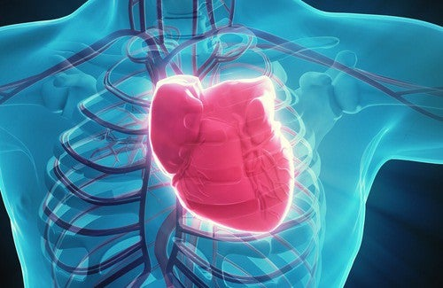 7 hábitos que prejudicam seu coração