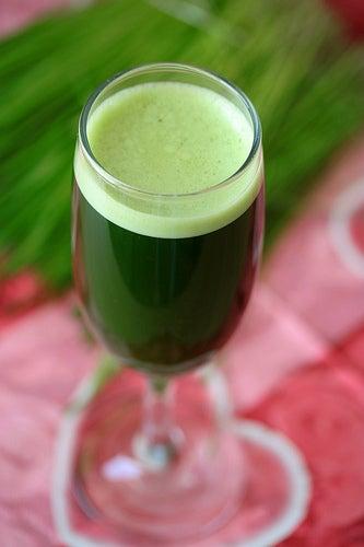 suco verde no jantar