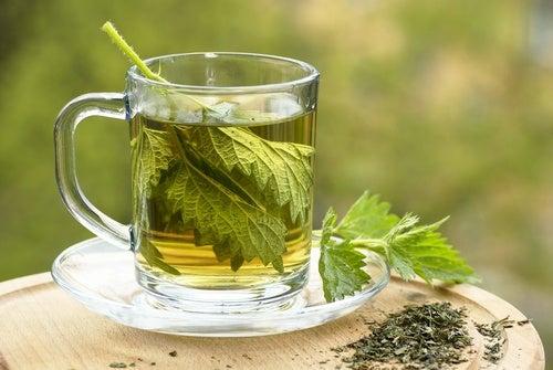 Chá para estimular o sistema linfático