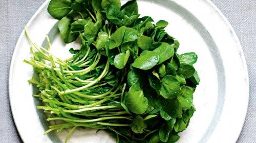 O agrião é um dos alimentos que fortalecem os rins