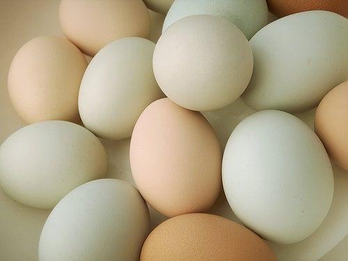 huevo-cobalt123