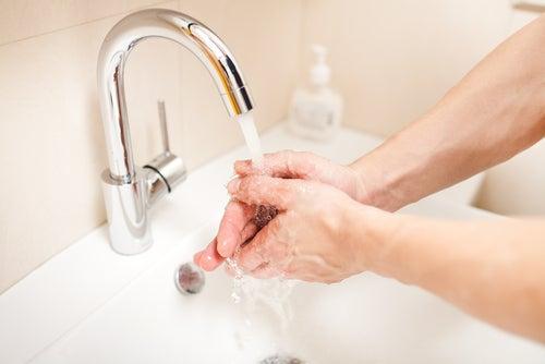 lavar as mãos antes de cozinhar