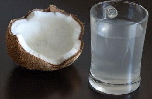 Os benefícios do consumo de água de coco natural