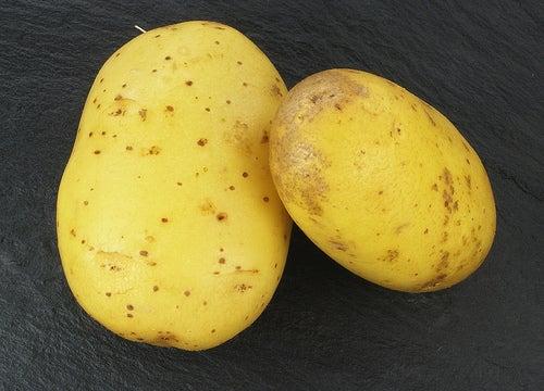 Água de batata para saúde do cabelo