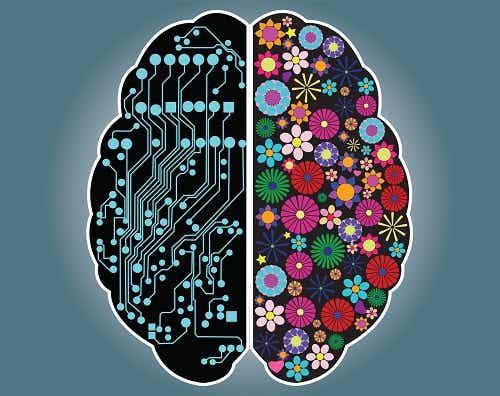 Descubra se você é uma pessoa racional ou intuitiva