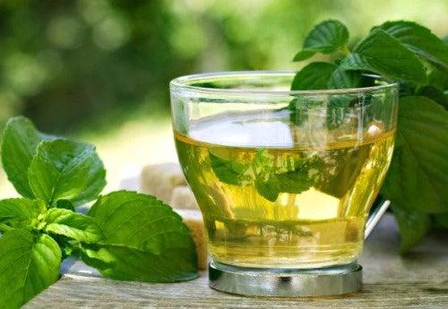 Chá de boldo contra a insônia