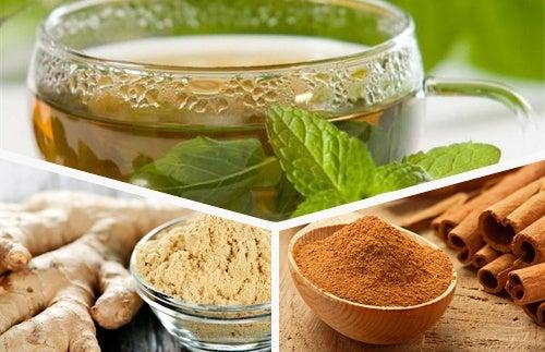 Plantas medicinais: chá verde, gengibre e canela para o seu organismo