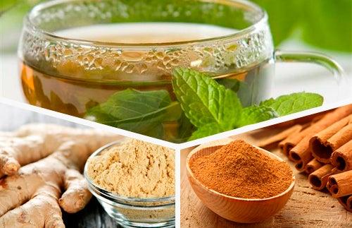 Renove seu organismo com chá verde, gengibre e canela todos os dias
