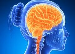 potencializar o cérebro