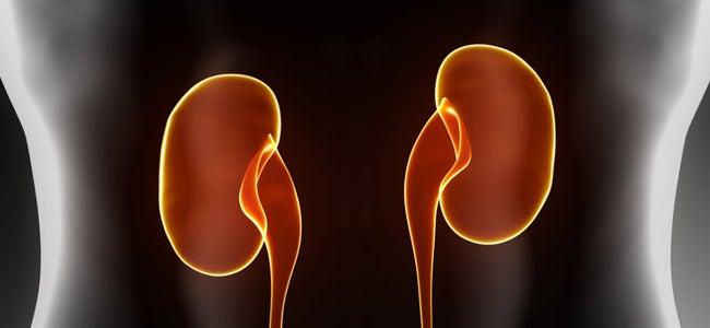 Verduras que estimulam o funcionamento dos rins