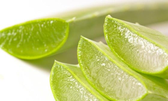 Suco de babosa ajuda combater o refluxo