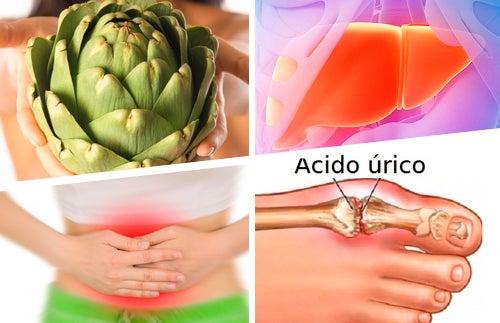 Usos_medicinais_ da_alcachofra