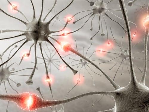 Remédios naturais para melhorar a memória