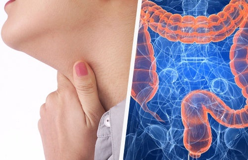 Relação entre as doenças de garganta e o intestino