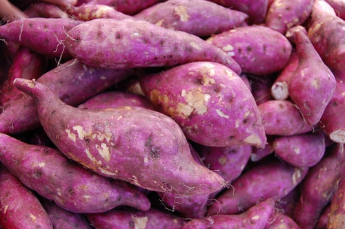 Receita com batata doce para combater a prisão de ventre
