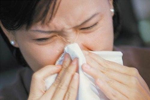 Tratamentos natural para as alergias
