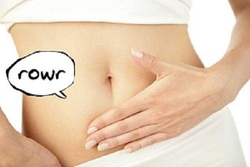 Conheça alguns motivos pelos quais nosso estômago ronca