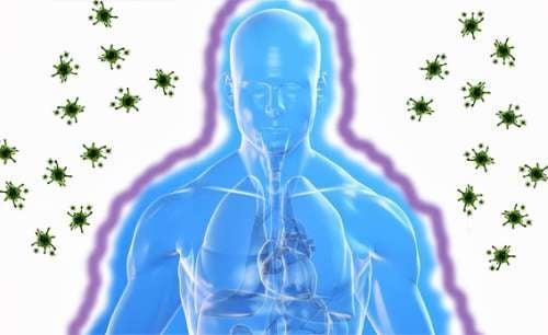 Sistema-inmunologico-2-500x306