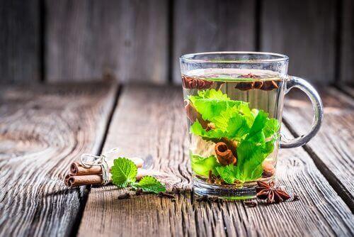 O chá verde com canela pode ajudar a acelerar o metabolismo