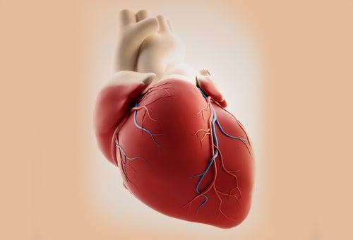 Coração com arritmia cardíaca