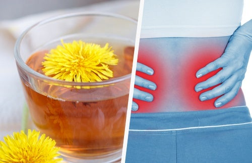 5 Formas simples de limpar os seus rins