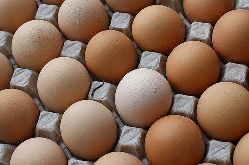Artesanato com caixas de ovos