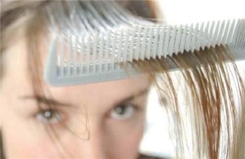 3 remédios com ervas para combater a queda de cabelo