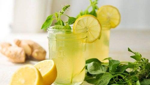 Gengibre Limão e Menta para perder peso