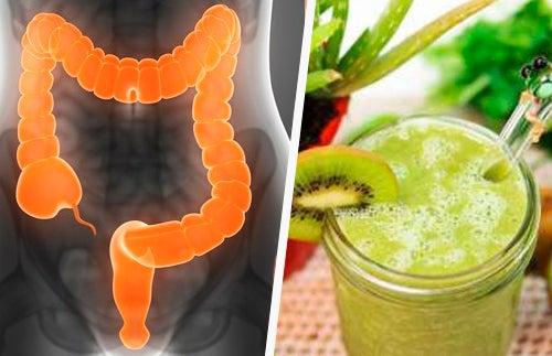 3 Batidas para curar o intestino irritado