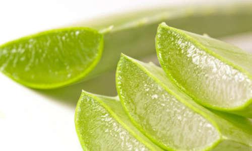 Hemorroidas: prevenção e tratamentos naturais