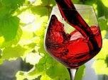 Taça-de-vinho-500×292