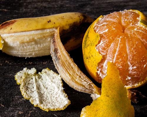 Nunca jogue fora as cascas de banana e laranja