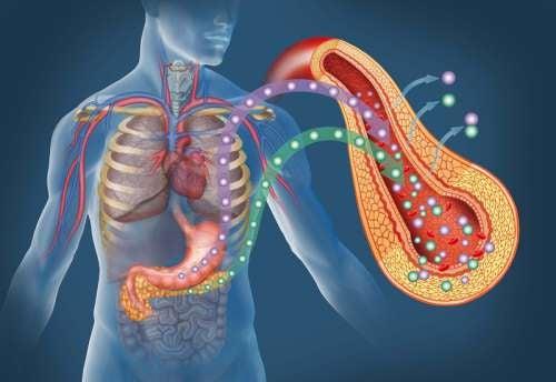 não dormir direito pode aumentar o risco de desenvolver a diabetes