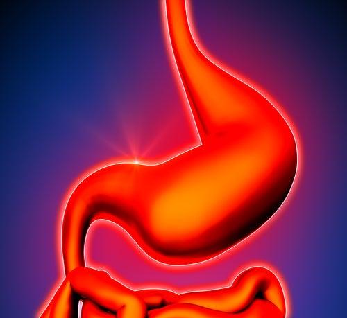 Usos do gengibre para dor no estômago