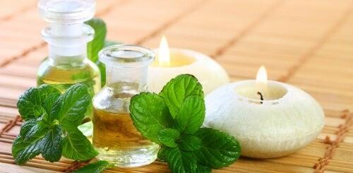 Como fazer óleo de menta para melhorar a saúde