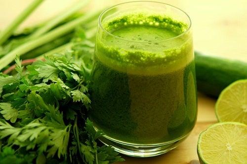 Salsinha para aliviar gastrite