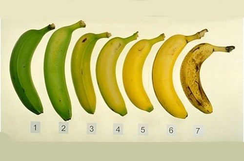 É mais saudável comer banana quando ela está madura ou verde?