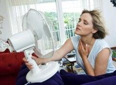 6 infusões naturais para tratar os sintomas da menopausa