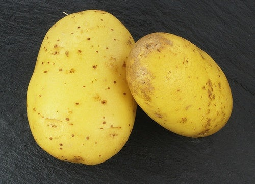 Que-propiedades-tem-suco-de-patata-crua