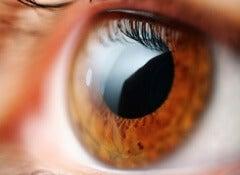6 dicas para melhorar a visão de modo natural e sem cirurgia