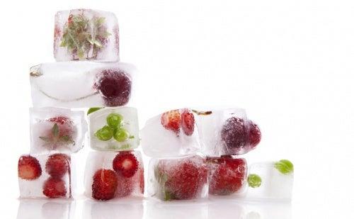 cubos_hielo_fruta-500x309