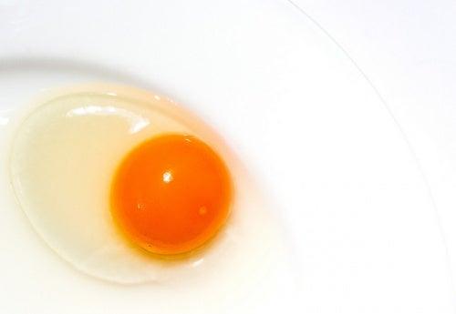 huevo-Mark-Seton
