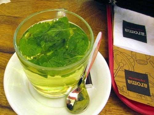 Chá de menta contra a insônia