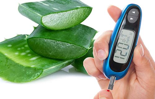 Tratar o diabetes com aloe vera