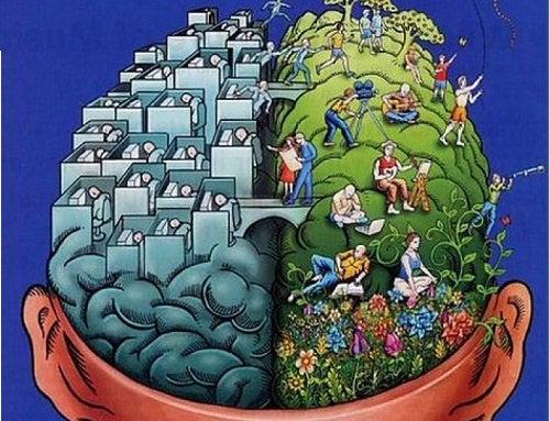Diferenças no cérebro do destro ou canhoto