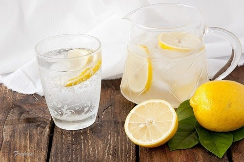 água no organismo