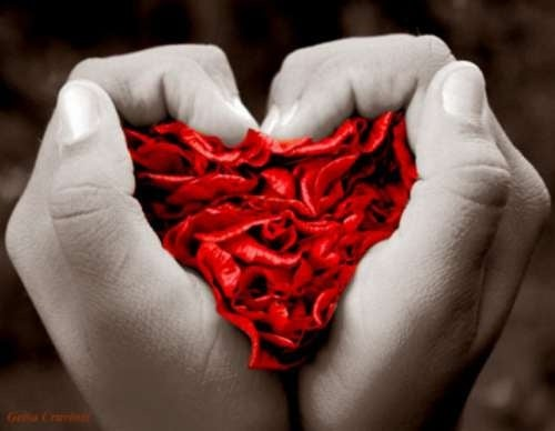 Mãos segurando flor