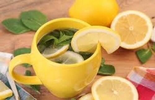 Cha-de-limon-500x324