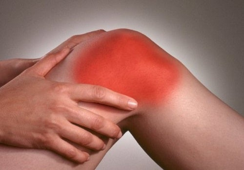 4 plantas ideais para combater a dor da artrite